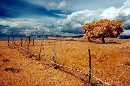 Landscape - Arbain Rambey